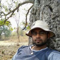 Abhijit Dey's picture
