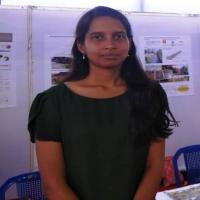 Sumita Bhattacharyya's picture