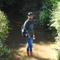 Nipu Kumar Das's picture